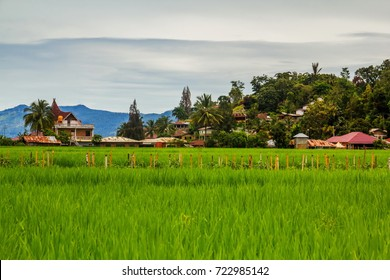 Rural scene of Samosir Island, Indonesia