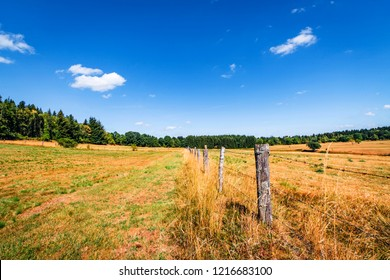 Rural scenery with a fence on dry land in the summer under a blue sky