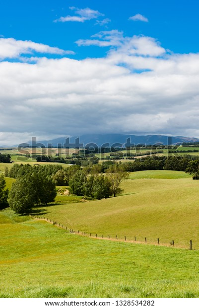 Rural setting with Blue Mountains, Otago, New Zealand.