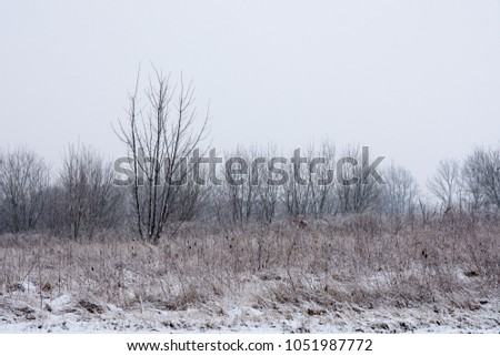 fad271b39aaa Rural Snow Covered Areas Stock Photo (Edit Now) 1051987772 ...