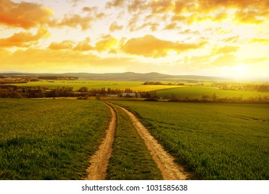 Rural spring landscape. Dirt road in field with green grass at sunset.