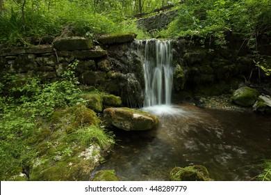 Rural streamside