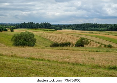 Rural summer landscape. Hills with fields in cloudy summer scenery.