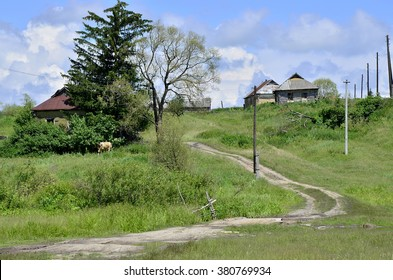 Rural summer landscape with the image of the old village.