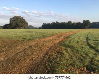 Rural Texas landscape