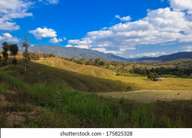 A rural view of farmland in North of Thailand