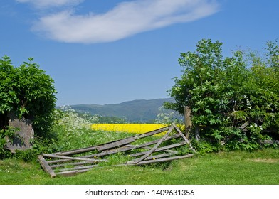 Rural view in Scotland with a broken wooden gate leading to fields.