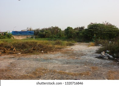 A rural wasteland in countryside scene with dirty ground alley, meadow overgrown nature green grass and abandoned building in background.