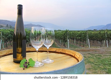 Rural wine arrangement - Bottle of white wine with two empty glasses and dried grapes decoration on a wooden barrel with the vineyard in the background. Kamloops, Okanagan BC.