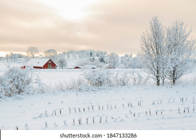 Rural winter landscape with a farm