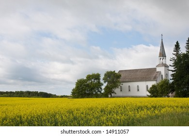 A rural wooden church in a field of canola