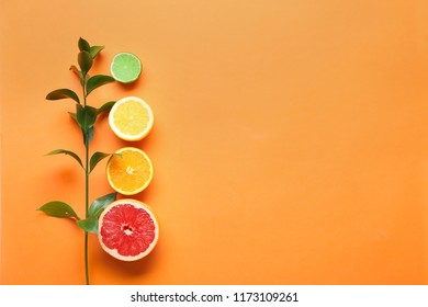 Ruscus branch and tropical fruits on color background