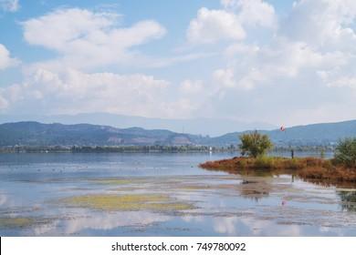 Rush sea scenery in Yunnan China