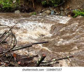 Rushing flash flood water in a stream with fallen trees and debris from heavy rainfall.