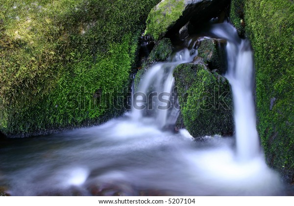 A rushing waterfall in the boulder field of a creek in a lush green forest
