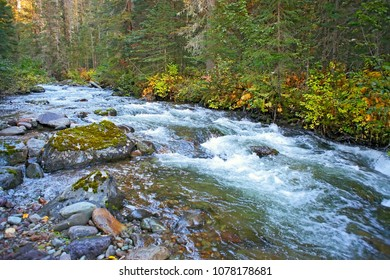 Rushing waters of an Wilderness Creek running through a beautiful old growth forest.