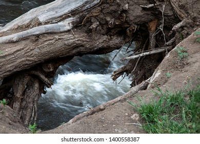 Rushing white water of bear creek, Morrison Colorado as seen through a tree uprooted on bank