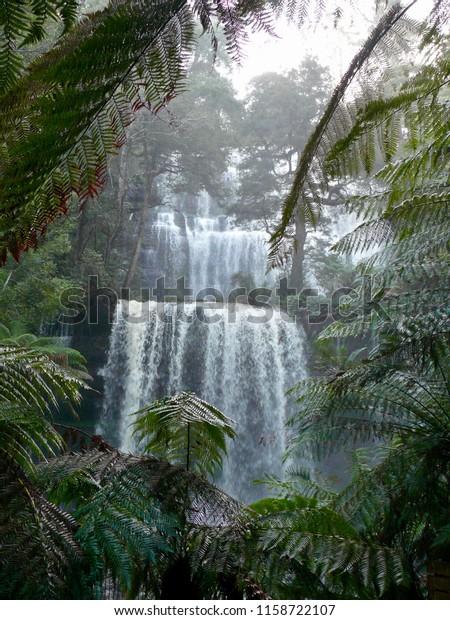 Russell Falls in Flood Mount Field National Park Tasmania