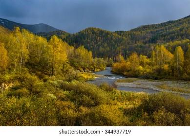 Russia, Altai region, Altai Republic, river Sema