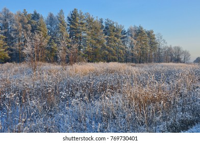 Russia. The beginning of the Russian winter