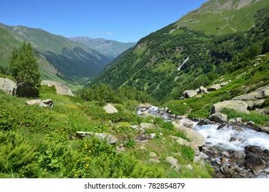 Russia, the Caucasian biosphere reserve, river Imeretinka in summer