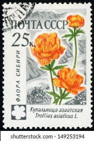 RUSSIA - CIRCA 1960: stamp printed in USSR (CCCP, soviet union) shows image of trollius asiaticus (Asian globeflower) from Asiatic flowers series, Scott 2410 A1236 25k gray orange green, circa 1960
