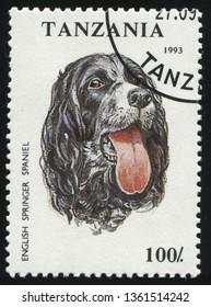 RUSSIA KALININGRAD, 25 MARCH 2019: stamp printed by Tanzania shows Pedigree dog, circa 1993