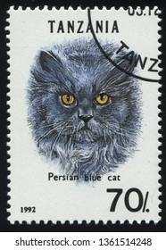 RUSSIA KALININGRAD, 25 MARCH 2019: stamp printed by Tanzania shows Domestic cat, circa 1992