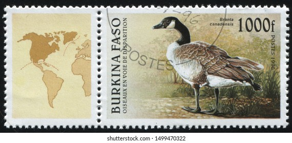 RUSSIA KALININGRAD, 26 MARCH 2019: stamp printed by Burkina Faso shows goose, circa 1996