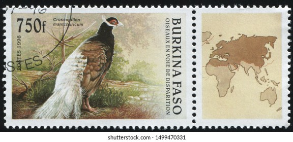RUSSIA KALININGRAD, 26 MARCH 2019: stamp printed by Burkina Faso shows peacock, circa 1996