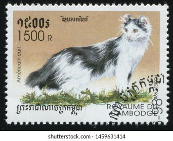 RUSSIA KALININGRAD, 27 MARCH 2019: stamp printed by Cambodia shows cute and charming cat plays, circa 1998