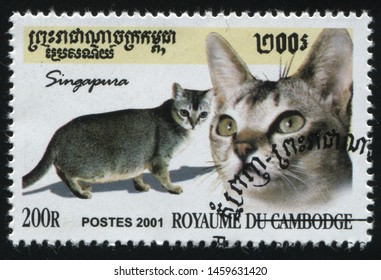 RUSSIA KALININGRAD, 27 MARCH 2019: stamp printed by Cambodia shows cute and charming cat plays, circa 2001