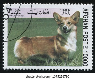 RUSSIA KALININGRAD, 28 MARCH 2019: stamp printed by Afghanistan shows purebred domestic dog, circa 1999