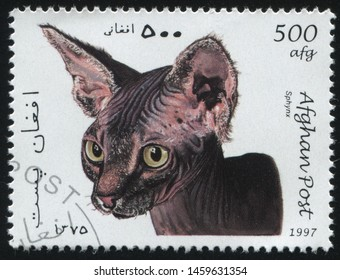 RUSSIA KALININGRAD, 28 MARCH 2019: stamp printed by Afghanistan shows cute and charming cat plays, circa 1997