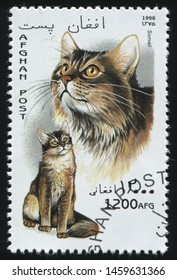 RUSSIA KALININGRAD, 28 MARCH 2019: stamp printed by Afghanistan shows cute and charming cat plays, circa 1996