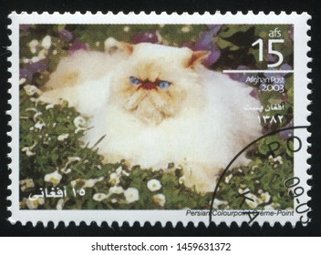 RUSSIA KALININGRAD, 28 MARCH 2019: stamp printed by Afghanistan shows cute and charming cat plays, circa 2003
