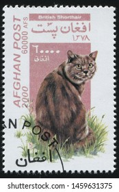 RUSSIA KALININGRAD, 28 MARCH 2019: stamp printed by Afghanistan shows cute and charming cat plays, circa 2000