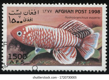 RUSSIA KALININGRAD, 28 MARCH 2019: stamp printed by Afghanistan shows fish, circa 1998