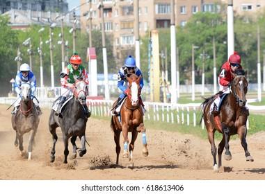 Russia, Moscow  -10 July 2016. Arabian race horse in motion on racetrack