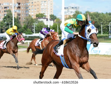 Russia, Moscow  -10 July 2016. Thoroughbred horses in racing on Central Moscow hippodrome