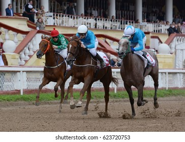 Russia, Moscow – 11 September 2016. Three Thoroughbred horses in racing