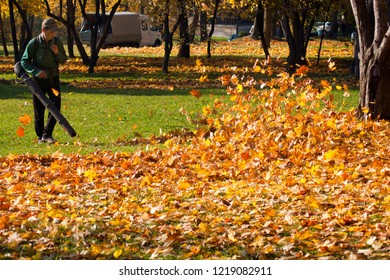 Russia, Moscow - 2018 October 15: Worker in the Tsaritsyno park removes leaves with a blower