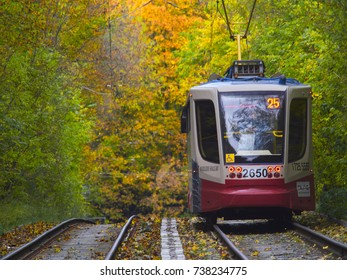 Russia, Moscow, October 2017, the tram follows its route through the autumn city park