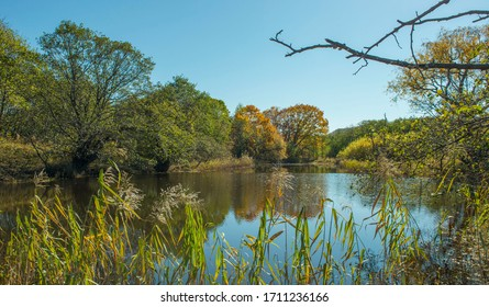 Russia. Primorye.The surroundings of Terney.  View of a small lake.