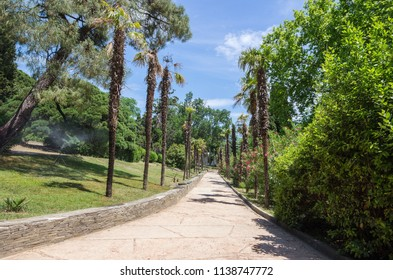 Russia, the Republic of Crimea, the city of Alupka. 06/09/2018: Vorontsov Park, walking track