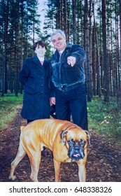 RUSSIA, SAINT-PETERSBURG, OLGINO - CIRCA 2000: Vintage photo of adult couple with boxer dog in pine forest in Olgino, Saint-Petersburg, Russia