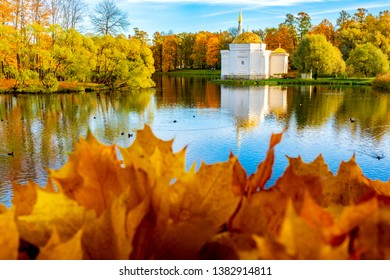 Russia. Saint-Petersburg. White pavilion at the pond through the autumn foliage in Pushkin. Catherine park. Golden autumn. Tsarskoe selo. Landscapes of Russia. Pushkin museums.