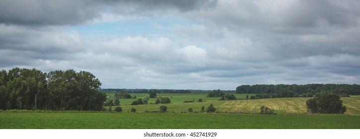 Russia, Smolensk region, field, grass, green field, summer