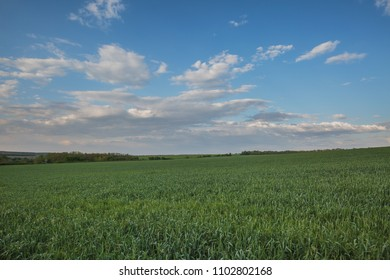 Russia, time lapse. The movement of the thunderclouds over the fields of winter wheat in early spring in the vast steppes of the Don.