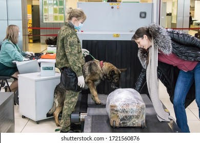 Russia, Yekaterinburg-January 24, 2020. At Koltsovo Airport, the customs service meets and inspects passengers arriving from Beijing. Customs officers with a dog walk around the hall. Masked passenge